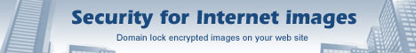 Copy protect images with encryption and domain lock.
