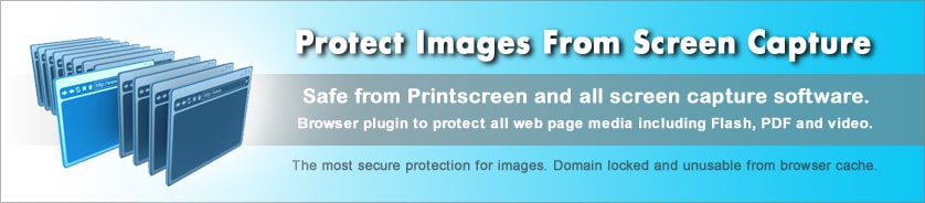 Protect web pages from Prinstcreen and screen capture.