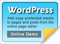 WordPress web site protection