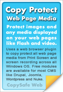 Copy protect web pages and images online