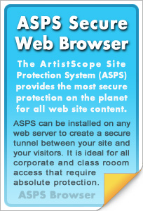 The most secure web browser